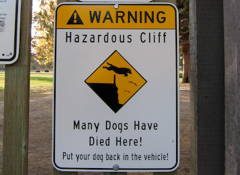 many dogs have died here sign